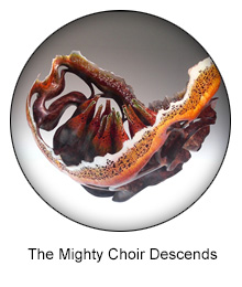 the mighty choir descends